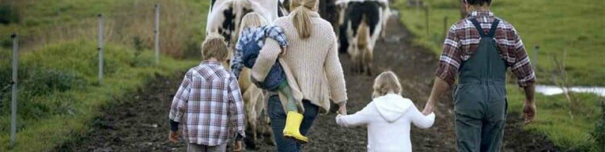 Brincadeiras para fazer na fazenda
