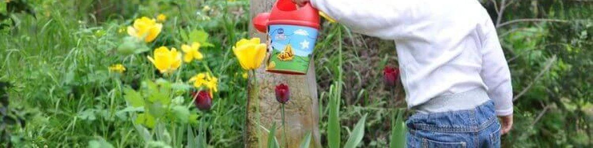 Como fazer horta infantil em casa