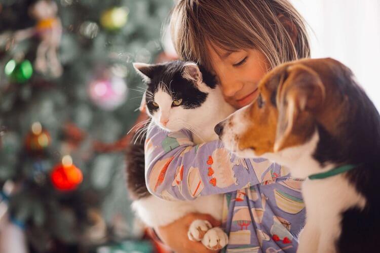 animais de estimação são uma ótima parceria para crianças!